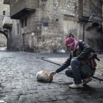 syria+cat.preview