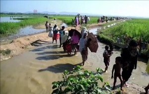 Rohingya_refugees_entering_Bangladesh_after_being_driven_out_of_Myanmar,_2017